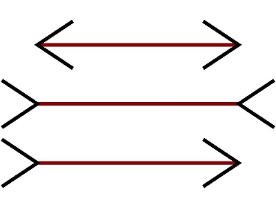 Which of the red lines is the longest?