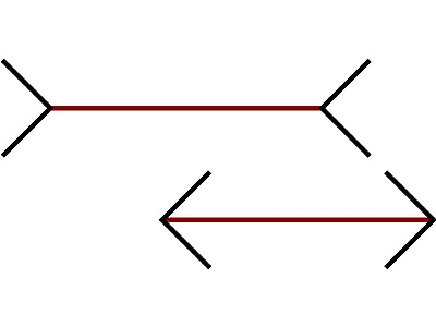 Which of the two red lines is shorter?
