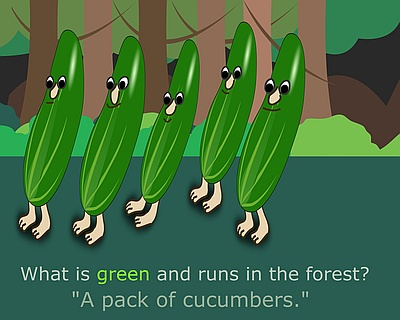 Pack of cucumbers in the forest
